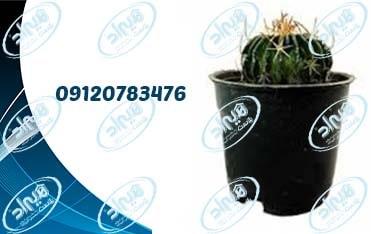 قیمت گلدان پلاستیکی نشا